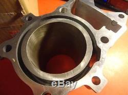 Nos New Oem Factory Suzuki 2007-2010 Lt-a450 Cylinder 11211-11h00-0f0